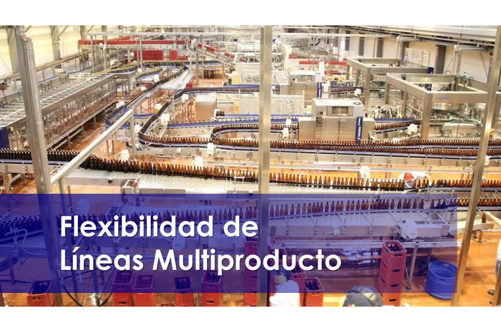 FLEXIBILIDAD DE LINEAS MULTIPRODUCTO