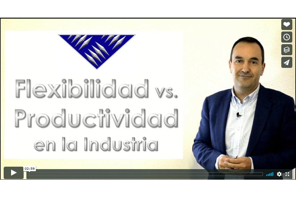 Flexibilidad vs. Productividad en la Industria