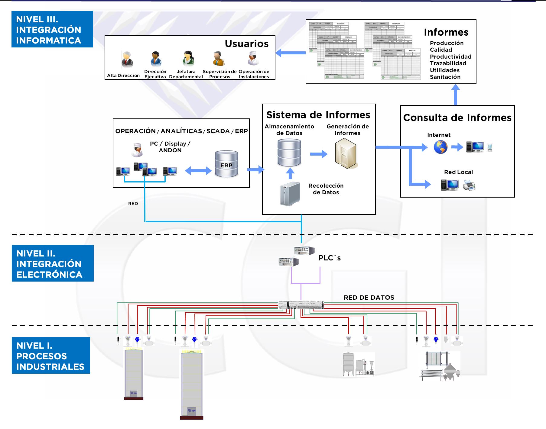 proceso de proceso de digitalización